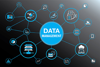 Data Management & Maintenance