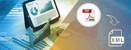PDF to XML Conversion for Software Development Company